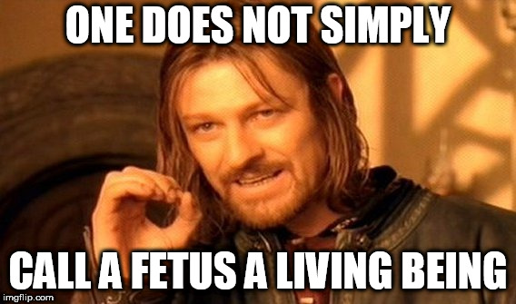 One Does Not Simply | ONE DOES NOT SIMPLY CALL A FETUS A LIVING BEING | image tagged in memes,one does not simply,pro choice,pro-choice,fetus,abortion | made w/ Imgflip meme maker