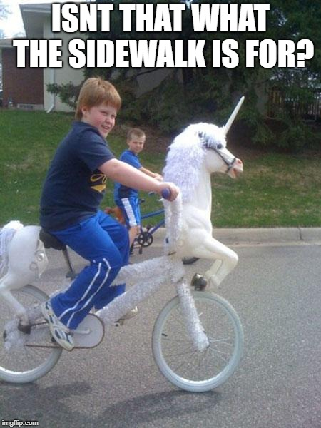 unicorn bike | ISNT THAT WHAT THE SIDEWALK IS FOR? | image tagged in unicorn bike | made w/ Imgflip meme maker