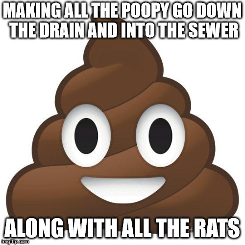 poop | MAKING ALL THE POOPY GO DOWN THE DRAIN AND INTO THE SEWER ALONG WITH ALL THE RATS | image tagged in poop | made w/ Imgflip meme maker