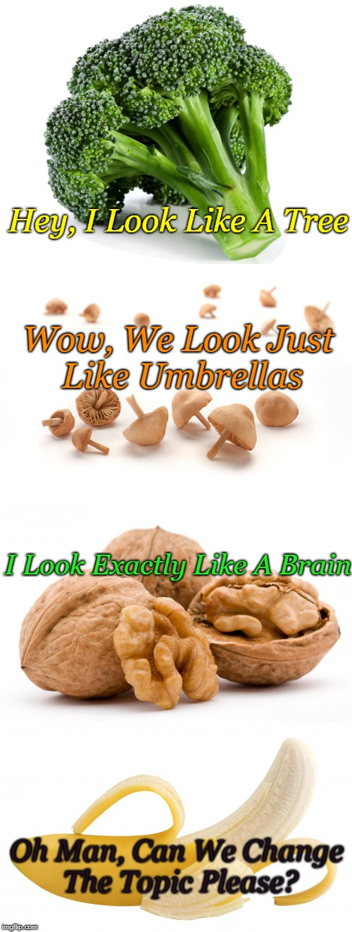 Foods Conversation! | Wow, We Look Just Like Umbrellas Hey, I Look Like A Tree I Look Exactly Like A Brain Oh Man, Can We Change The Topic Please? | image tagged in memes,foods,fruit  vegies,food conversation,awkward banana | made w/ Imgflip meme maker