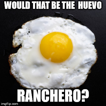 Eggs | WOULD THAT BE THE  HUEVO RANCHERO? | image tagged in eggs | made w/ Imgflip meme maker