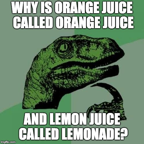 Philosoraptor Meme | WHY IS ORANGE JUICE CALLED ORANGE JUICE AND LEMON JUICE CALLED LEMONADE? | image tagged in memes,philosoraptor | made w/ Imgflip meme maker