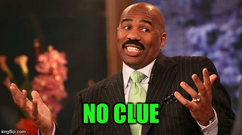 Steve Harvey Meme | NO CLUE | image tagged in memes,steve harvey | made w/ Imgflip meme maker