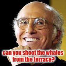 can you shoot the whales from the terrace? | image tagged in larry david | made w/ Imgflip meme maker