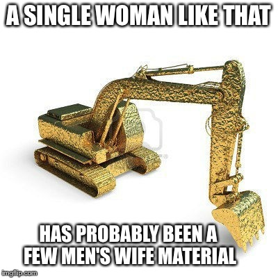 gold digger | A SINGLE WOMAN LIKE THAT HAS PROBABLY BEEN A FEW MEN'S WIFE MATERIAL | image tagged in gold digger | made w/ Imgflip meme maker