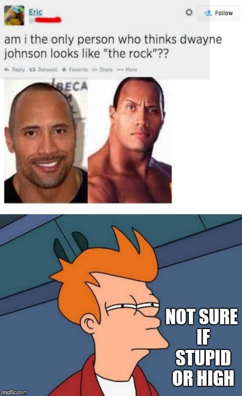 Yes this is real | NOT SURE IF STUPID OR HIGH | image tagged in futurama fry,the rock,the rock driving,memes,stupid,high | made w/ Imgflip meme maker