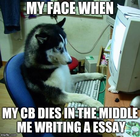 I made this for school. Dont Look plz k thx bye  | MY FACE WHEN MY CB DIES IN THE MIDDLE ME WRITING A ESSAY | image tagged in funny,memes,husky,computer,raydog,raycat | made w/ Imgflip meme maker