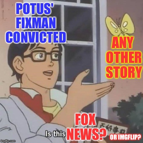 Is this a butterfly? | OR IMGFLIP? | image tagged in fox news,imgflip,michael cohen,potus | made w/ Imgflip meme maker