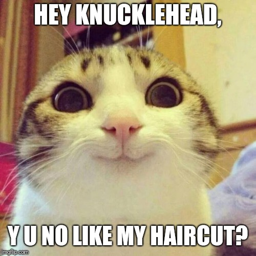 Smiling Cat | HEY KNUCKLEHEAD, Y U NO LIKE MY HAIRCUT? | image tagged in memes,smiling cat,y u no,haircut | made w/ Imgflip meme maker