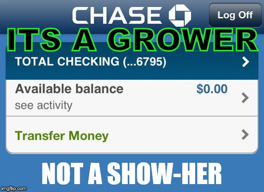 Low bank account  |  ITS A GROWER; NOT A SHOW-HER | image tagged in low bank account | made w/ Imgflip meme maker