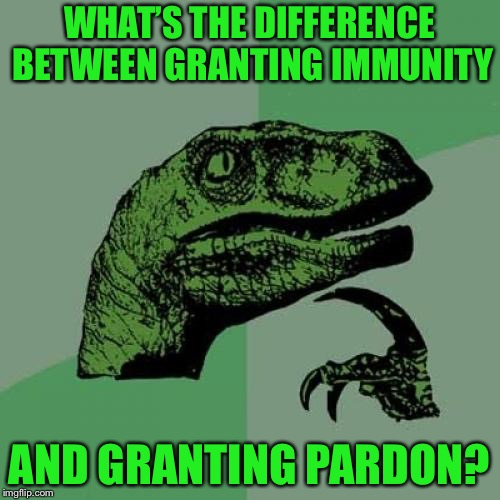 Philosoraptor Meme | WHAT'S THE DIFFERENCE BETWEEN GRANTING IMMUNITY AND GRANTING PARDON? | image tagged in memes,philosoraptor | made w/ Imgflip meme maker