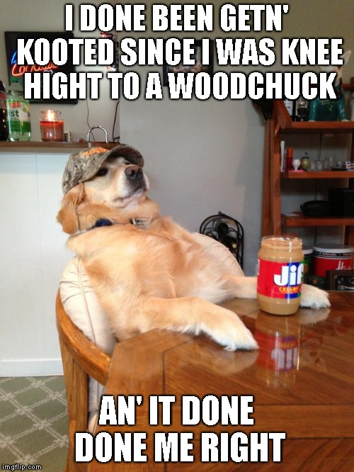 redneck dog | I DONE BEEN GETN' KOOTED SINCE I WAS KNEE HIGHT TO A WOODCHUCK AN' IT DONE DONE ME RIGHT | image tagged in redneck dog | made w/ Imgflip meme maker