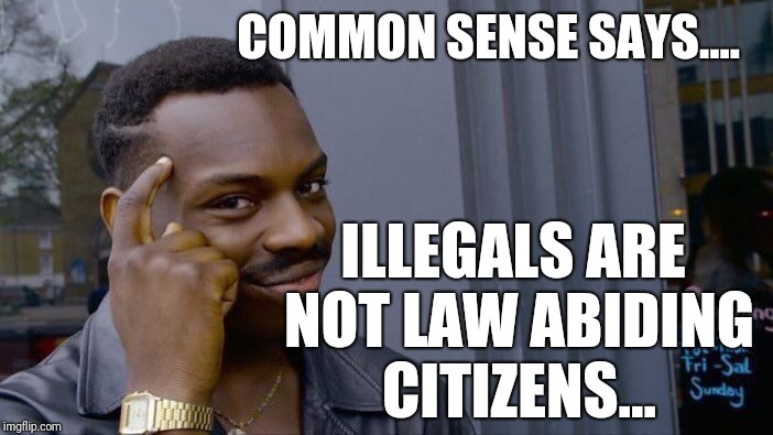 Roll Safe Think About It Meme | COMMON SENSE SAYS.... ILLEGALS ARE NOT LAW ABIDING CITIZENS... | image tagged in memes,roll safe think about it | made w/ Imgflip meme maker
