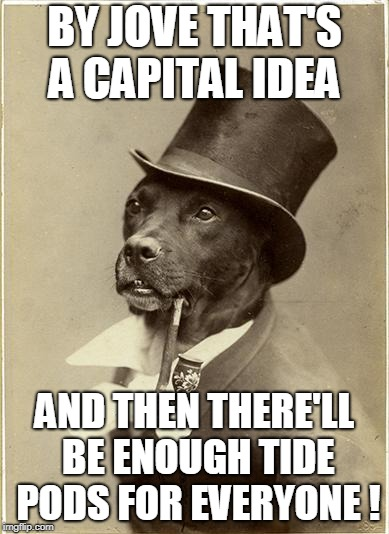 Old Money Dog | BY JOVE THAT'S A CAPITAL IDEA AND THEN THERE'LL BE ENOUGH TIDE PODS FOR EVERYONE ! | image tagged in old money dog | made w/ Imgflip meme maker
