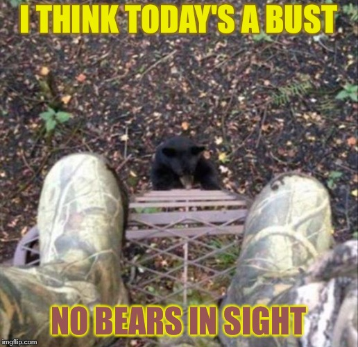 Where'd he come from? | I THINK TODAY'S A BUST NO BEARS IN SIGHT | image tagged in hunting,bears,memes,funny,oblivious | made w/ Imgflip meme maker