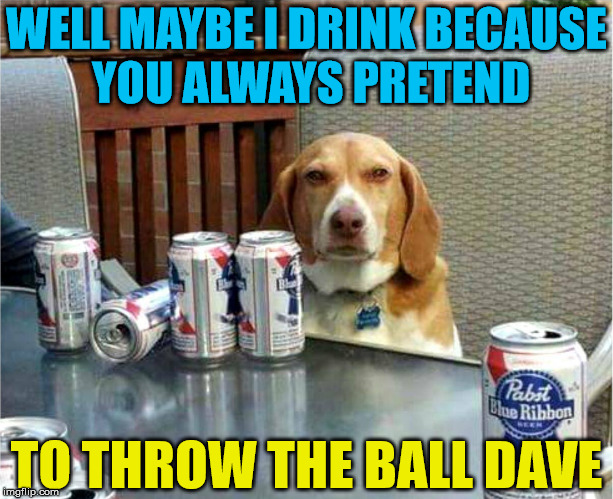 This dog is scarred from the fake throw the ball trick. | WELL MAYBE I DRINK BECAUSE YOU ALWAYS PRETEND TO THROW THE BALL DAVE | image tagged in memes,drinking,relationships,dog,funny dog,beer | made w/ Imgflip meme maker