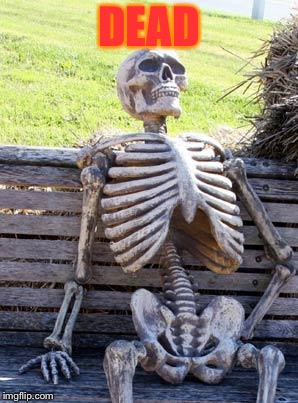 DEAD | image tagged in memes,waiting skeleton | made w/ Imgflip meme maker