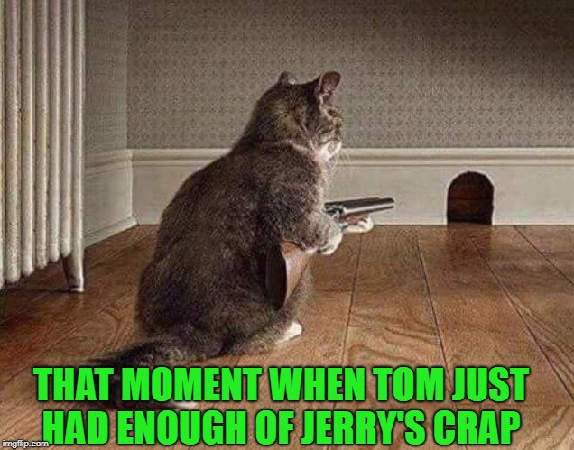 over the edge | THAT MOMENT WHEN TOM JUST HAD ENOUGH OF JERRY'S CRAP | image tagged in tom and jerry,funny,shotgun | made w/ Imgflip meme maker