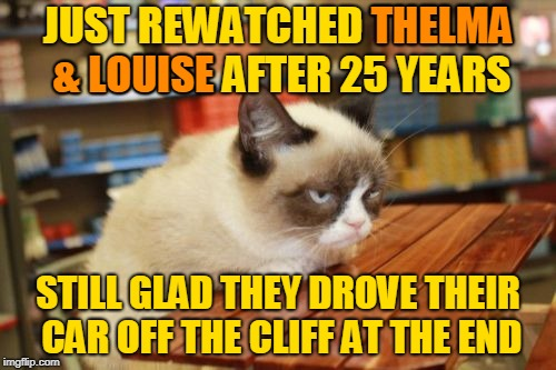 Could've Saved Time and Just Read the CliffsNotes - inspired by superdenni. | JUST REWATCHED THELMA & LOUISE AFTER 25 YEARS STILL GLAD THEY DROVE THEIR CAR OFF THE CLIFF AT THE END THELMA & LOUISE | image tagged in memes,grumpy cat table,grumpy cat,rewatched,movies,superdenni | made w/ Imgflip meme maker