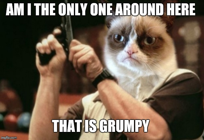 Is grumpy the only one | AM I THE ONLY ONE AROUND HERE THAT IS GRUMPY | image tagged in memes,grumpy cat,am i the only one around here,face swap | made w/ Imgflip meme maker