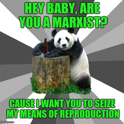 Pickup Line Panda picks up college chicks |  HEY BABY, ARE YOU A MARXIST? CAUSE I WANT YOU TO SEIZE MY MEANS OF REPRODUCTION | image tagged in memes,pickup line panda | made w/ Imgflip meme maker