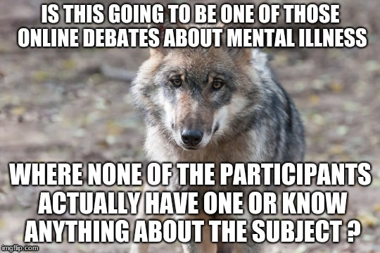 Depressing wolf on mental illness | IS THIS GOING TO BE ONE OF THOSE ONLINE DEBATES ABOUT MENTAL ILLNESS WHERE NONE OF THE PARTICIPANTS ACTUALLY HAVE ONE OR KNOW ANYTHING ABOUT | image tagged in wolf,funny,demotivational,autism,mental health,privilege | made w/ Imgflip meme maker