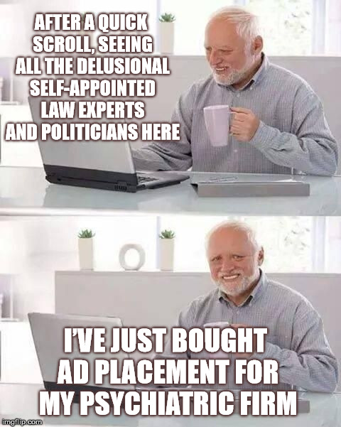 Target Audience Confirmed | AFTER A QUICK SCROLL, SEEING ALL THE DELUSIONAL SELF-APPOINTED LAW EXPERTS AND POLITICIANS HERE I'VE JUST BOUGHT AD PLACEMENT FOR MY PSYCHIA | image tagged in hide the pain harold,mental health,memes,stupid | made w/ Imgflip meme maker