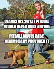 Dog Owner Douchebag | CLAIMS HIS SWEET PITBULL WOULD NEVER HURT ANYONE PITBULL MAULS BABY, CLAIMS BABY PROVOKED IT | image tagged in dog,dog meme | made w/ Imgflip meme maker