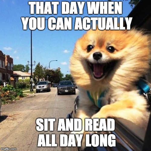 THAT DAY WHEN YOU CAN ACTUALLY; SIT AND READ ALL DAY LONG | image tagged in happy dog | made w/ Imgflip meme maker