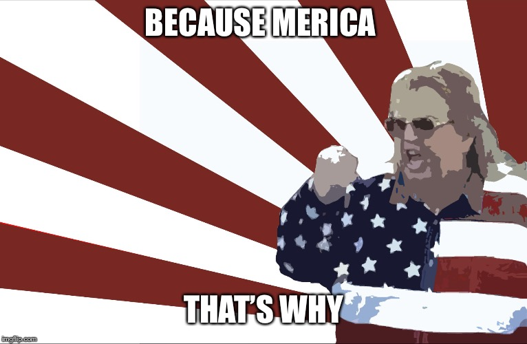 'merica | BECAUSE MERICA THAT'S WHY | image tagged in 'merica | made w/ Imgflip meme maker
