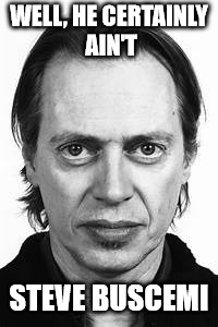 Steve Buscemi | WELL, HE CERTAINLY AIN'T STEVE BUSCEMI | image tagged in steve buscemi | made w/ Imgflip meme maker