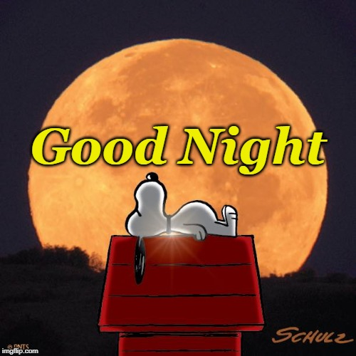 a Dog Days Night | Good Night | image tagged in good night,snoopy,full moon,sleep | made w/ Imgflip meme maker
