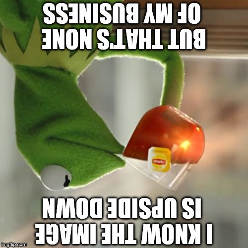 Upside down business | BUT THAT'S NONE OF MY BUSINESS I KNOW THE IMAGE IS UPSIDE DOWN | image tagged in memes,but thats none of my business,kermit the frog,funny,upside down,upside-down | made w/ Imgflip meme maker