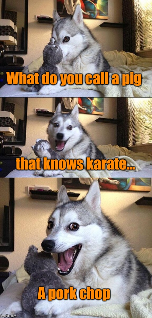 Bad Pun Dog | What do you call a pig that knows karate... A pork chop | image tagged in memes,bad pun dog,pork chop,pig | made w/ Imgflip meme maker