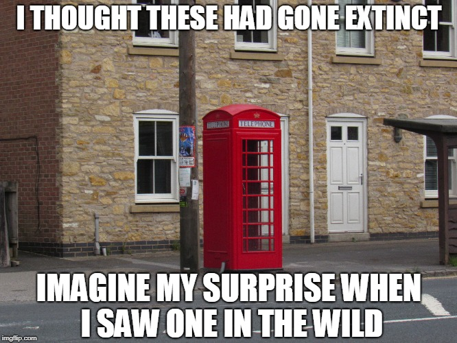 Good to be home | I THOUGHT THESE HAD GONE EXTINCT IMAGINE MY SURPRISE WHEN I SAW ONE IN THE WILD | image tagged in telephone booth,england | made w/ Imgflip meme maker