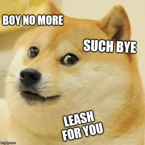 Doge Meme | BOY NO MORE SUCH BYE LEASH FOR YOU | image tagged in memes,doge | made w/ Imgflip meme maker