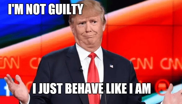 Trump guilty?  | I'M NOT GUILTY I JUST BEHAVE LIKE I AM | image tagged in memes,funny memes,trump meme,impeach trump,trump lies,donald trump | made w/ Imgflip meme maker