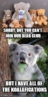 Discrimination Hurts Everyone | SORRY, BUT YOU CAN'T JOIN OUR BEAR CLUB BUT I HAVE ALL OF THE KOALAFICATIONS | image tagged in bear,koala,memes,discrimination,affirmative action | made w/ Imgflip meme maker