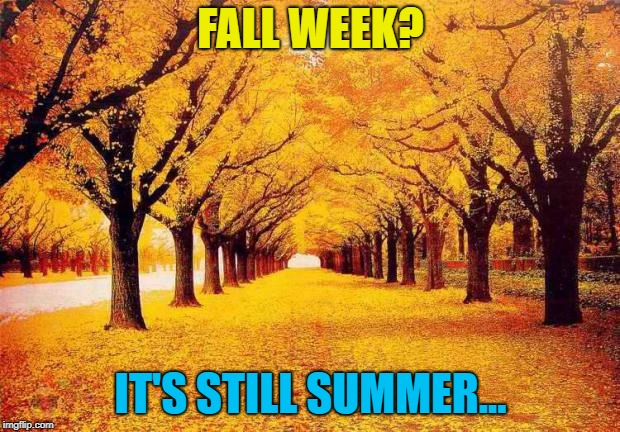 Autumn trees | FALL WEEK? IT'S STILL SUMMER... | image tagged in autumn trees | made w/ Imgflip meme maker