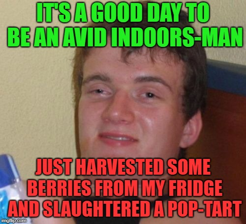 How to survive in the great in-doors |  IT'S A GOOD DAY TO BE AN AVID INDOORS-MAN; JUST HARVESTED SOME BERRIES FROM MY FRIDGE AND SLAUGHTERED A POP-TART | image tagged in memes,10 guy,funny,pop tarts,strawberries | made w/ Imgflip meme maker