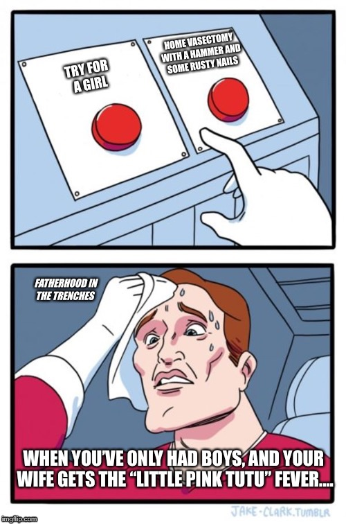 "The Only Reasonable Choice | WHEN YOU'VE ONLY HAD BOYS, AND YOUR WIFE GETS THE ""LITTLE PINK TUTU"" FEVER.... 