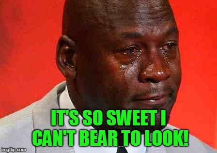 crying michael jordan | IT'S SO SWEET I CAN'T BEAR TO LOOK! | image tagged in crying michael jordan | made w/ Imgflip meme maker