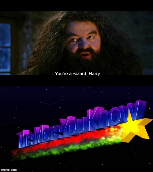 the more you know. | image tagged in harry potter,the more you know,you're a wizard harry,hagrid,funny,crossover | made w/ Imgflip meme maker
