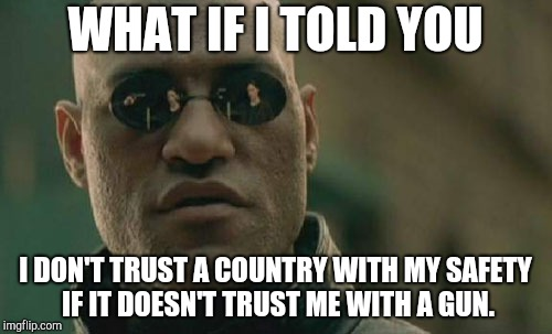 Matrix Morpheus Meme | WHAT IF I TOLD YOU I DON'T TRUST A COUNTRY WITH MY SAFETY IF IT DOESN'T TRUST ME WITH A GUN. | image tagged in memes,matrix morpheus | made w/ Imgflip meme maker