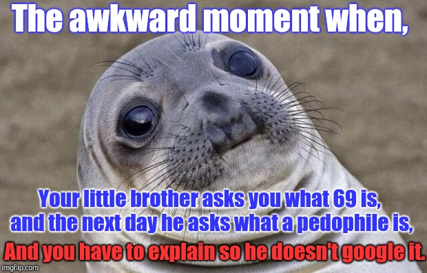 Seriously, this is my life. ;-; | The awkward moment when, Your little brother asks you what 69 is, and the next day he asks what a pedophile is, And you have to explain so h | image tagged in memes,awkward moment sealion,little brother,help,trying to explain | made w/ Imgflip meme maker