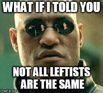 What if i told you | WHAT IF I TOLD YOU NOT ALL LEFTISTS ARE THE SAME | image tagged in what if i told you,leftist,leftists,left,liberal,liberals | made w/ Imgflip meme maker