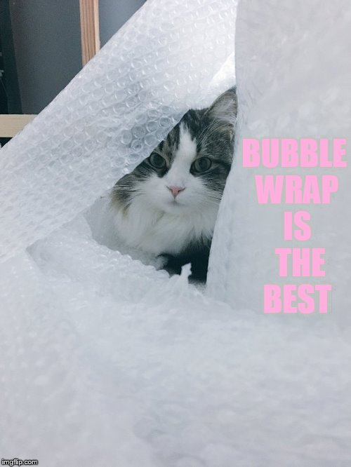 BUBBLE WRAP IS  THE BEST | made w/ Imgflip meme maker