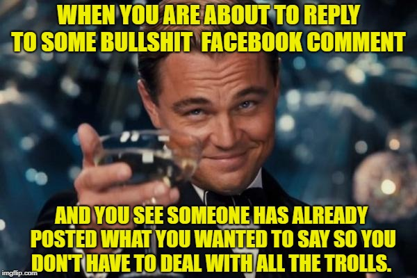 Leonardo Dicaprio Cheers Meme | WHEN YOU ARE ABOUT TO REPLY TO SOME BULLSHIT  FACEBOOK COMMENT AND YOU SEE SOMEONE HAS ALREADY POSTED WHAT YOU WANTED TO SAY SO YOU DON'T HA | image tagged in memes,leonardo dicaprio cheers | made w/ Imgflip meme maker