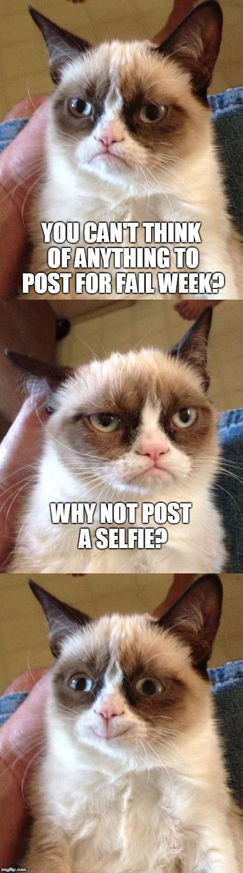 Fail Week - from August 27th to September 3rd (a Landon_the_memer event). | YOU CAN'T THINK OF ANYTHING TO POST FOR FAIL WEEK? WHY NOT POST A SELFIE? | image tagged in bad pun grumpy cat,memes,fail week,selfie,grumpy cat insults,landon_the_memer | made w/ Imgflip meme maker