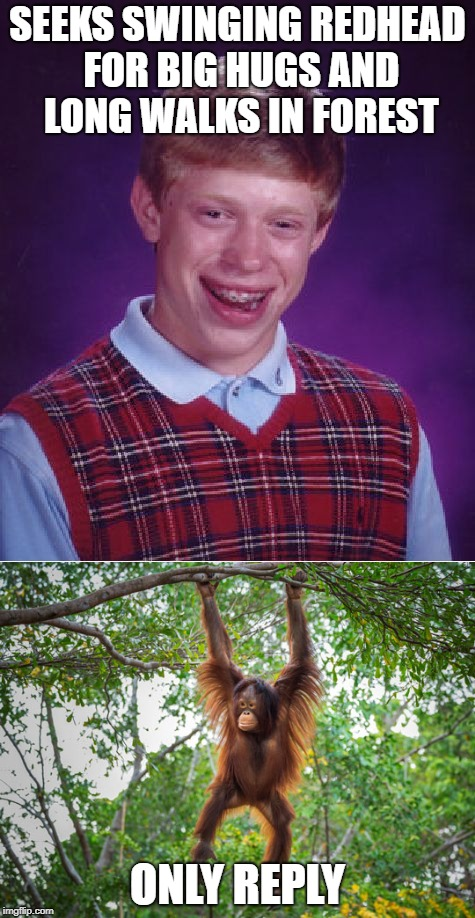 Bad Luck Brian looking for love | SEEKS SWINGING REDHEAD FOR BIG HUGS AND LONG WALKS IN FOREST ONLY REPLY | image tagged in bad luck brian,monkey business,orangutan,online dating | made w/ Imgflip meme maker